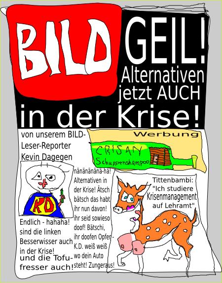 BILD - Alternativen in der Krise